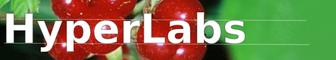 Logo Hyperlabs.net